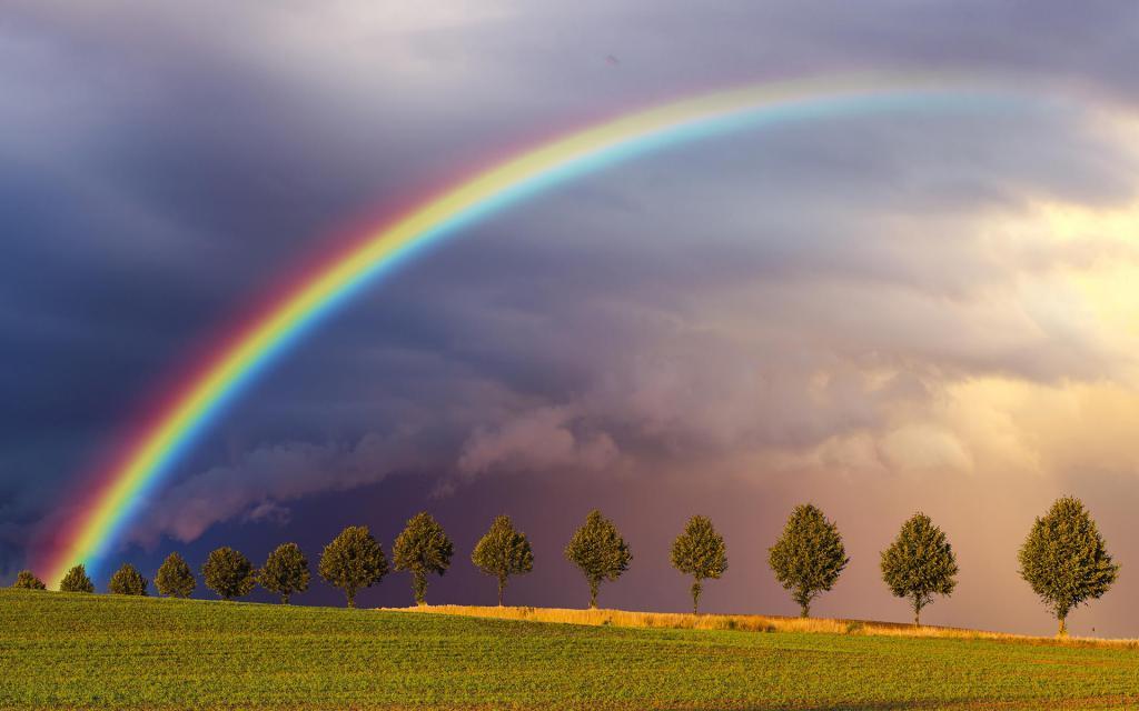 Прекрасное явление, связанное с дождем, - радуга