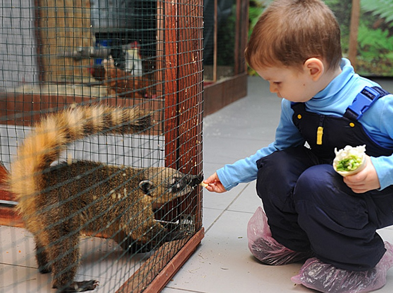 Зоопарк в городе Сергиев Посад