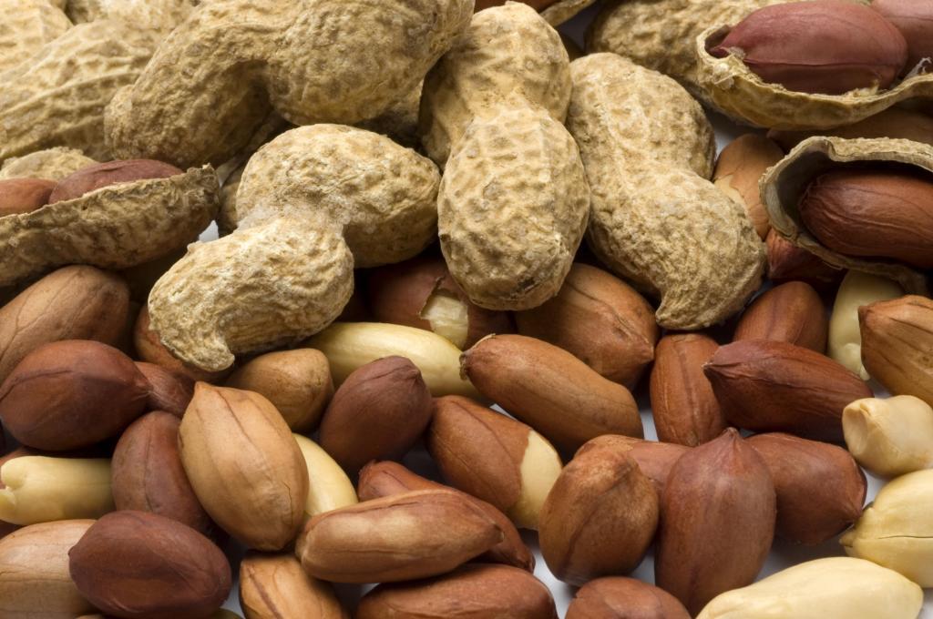 Земляной орех где растет